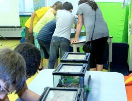 Atelier Insectambulant